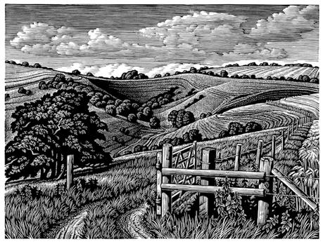 Malacombe Bottom  马拉科姆谷地  115 x 150 mm   £245 Edition size: 150  A landscape of Chalk downland in Wiltshire, England  英格兰威尔特郡的白垩丘陵景观