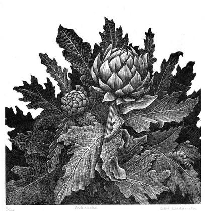 Artichoke  菜蓟  180 x 180mm   £100 Edition size: 100