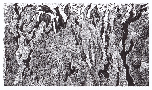 Ancient Oak  老橡树  100 x 175 mm   £70 Edition size: 350  The fragments of a hollow tree trunk believed to have been a thousand years old, and still alive and with a single branch in leaf at the time I engraved it.   这是老橡树空心树干的残片,相信此数已上千岁,在我刻画它的时候,它有一枝一叶依然存活。