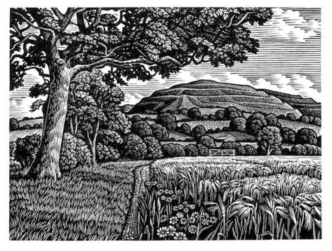 Hambledon Hill in Summer  夏天的汉布顿山  115 x 150 mm   £175 Edition size: 150