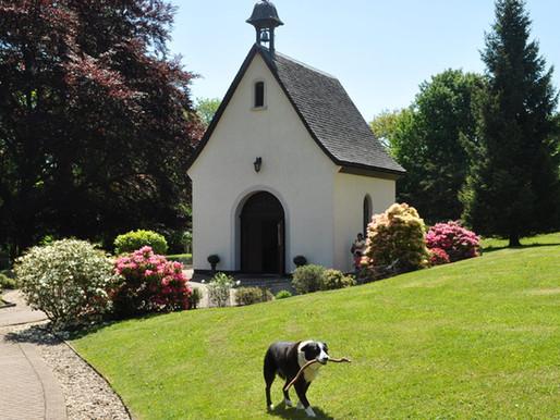 Schoenstatt Prayer Resources for Lent