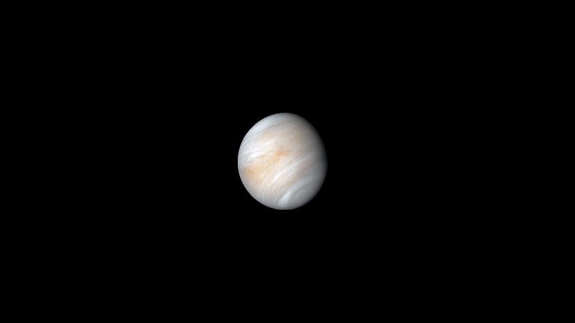 Venus2.png