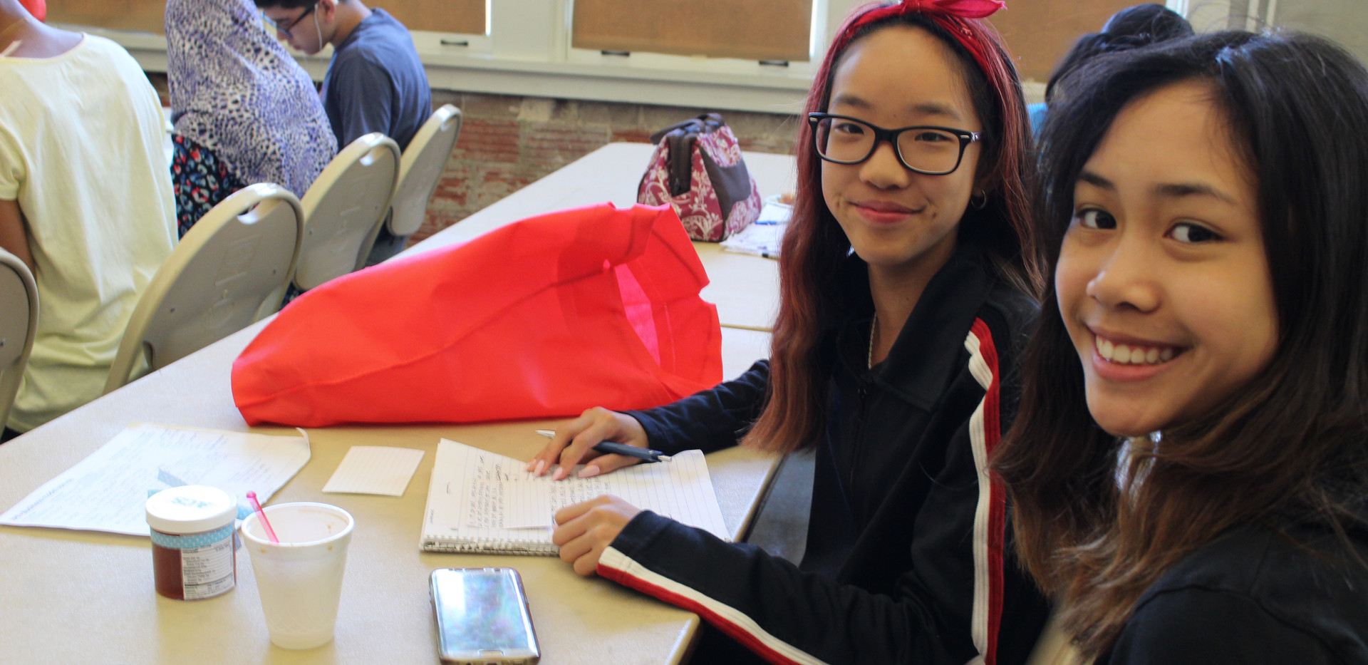STEME Ambassador Program