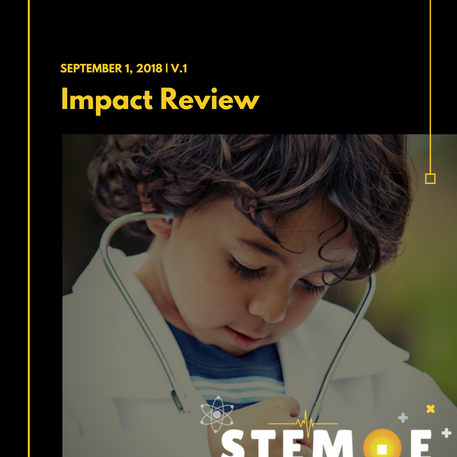 STEME Impact Review 2018