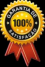 selo-de-certificado-png-3.png