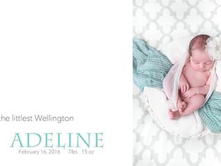 Introducing little Adeline