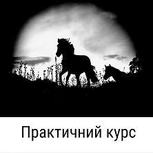 photo_2021-03-16_21-01-16.jpg