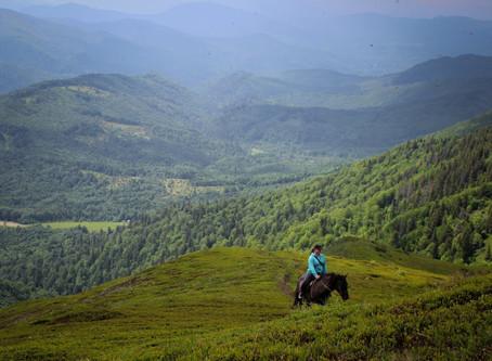 Коні, гори тасправжній Ти.
