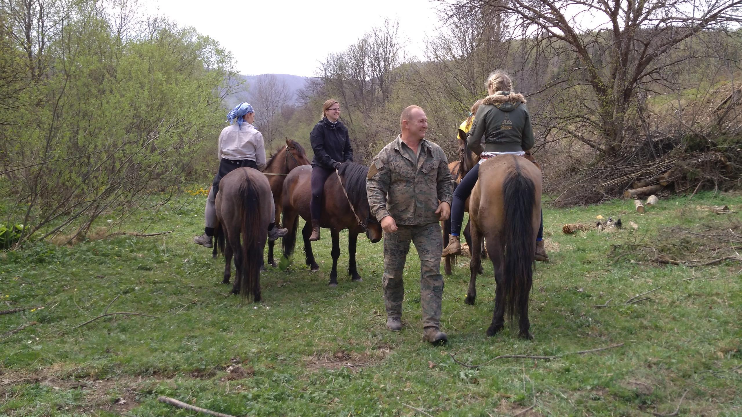 другий день обкатки молодих коней в перегоні