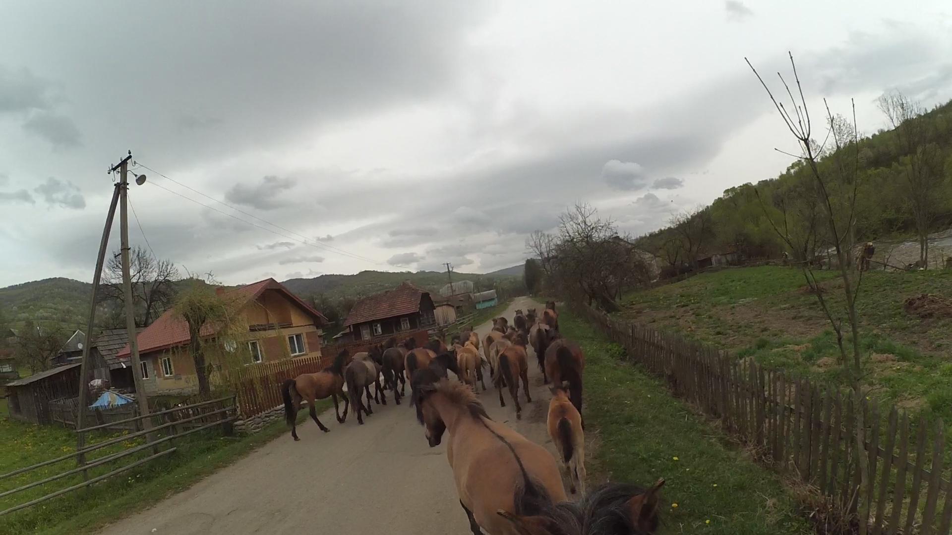 перегін через село Люта