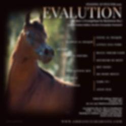 Evalution Stallion ad 1.jpeg
