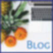 health wisdom institute blog