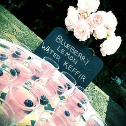 Morning Wellness shot, probiotic blueberry lemon keffir water brewed by Andzia #thelotusfeed #homema