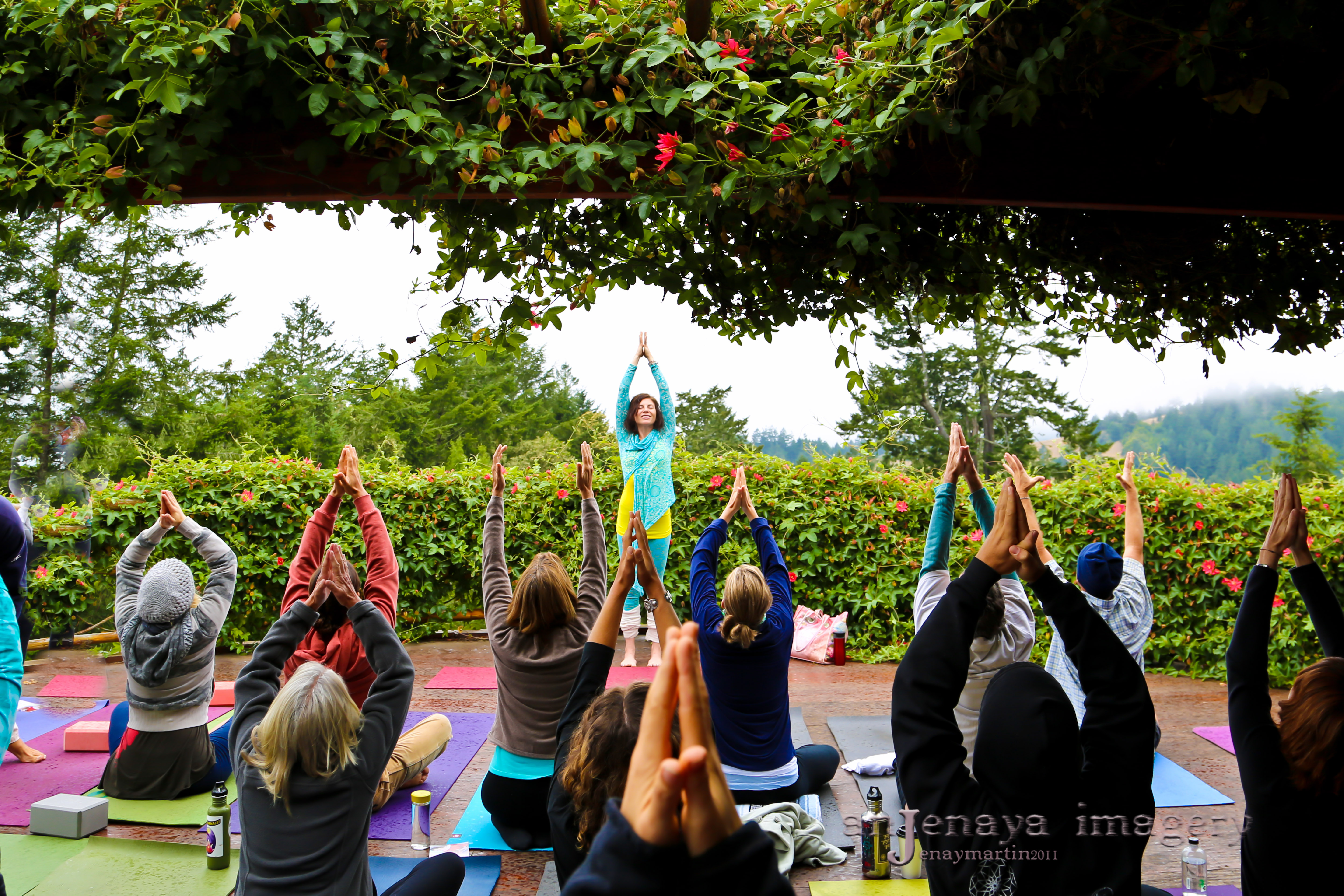 The Lotus Feed Yoga Retreat