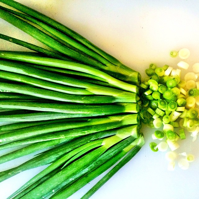 Fresh green onions from #thelotusfeed I feel like the richest person in the world! #blessed #gratefu