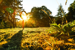 Sonoma Wine Country Yoga Retreats