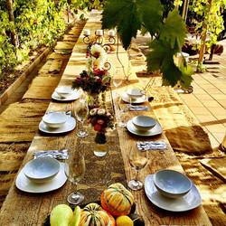 an intimate dinner for 6 woman from Las Vegas #thelotusfeed #lotusfeed #fancyfarmtotable #thegoodlif