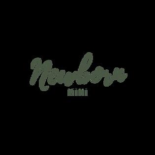 Newborn Mini.png