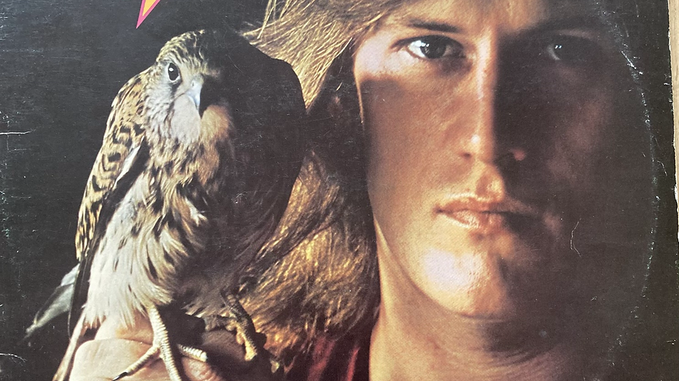 Alvin Lee and Co. 'In Flight'