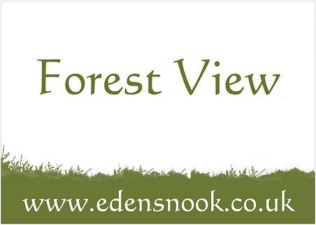 ForestView.jpg