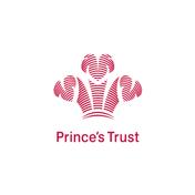 princes trust sparkloop.png