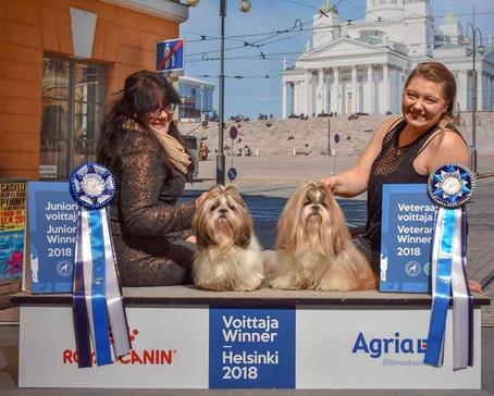 Finnish Winner 2018