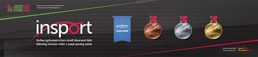 Insport Award Plaque.jpg