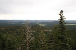 NM Overland 2010-24.JPG