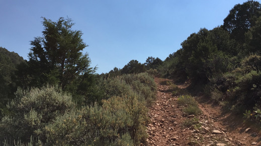 Big long climb after crossing the dry Cottonwood Creek