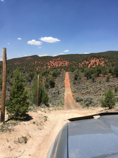 A large section of trail on the West side parallels the Bull Gulch WSA