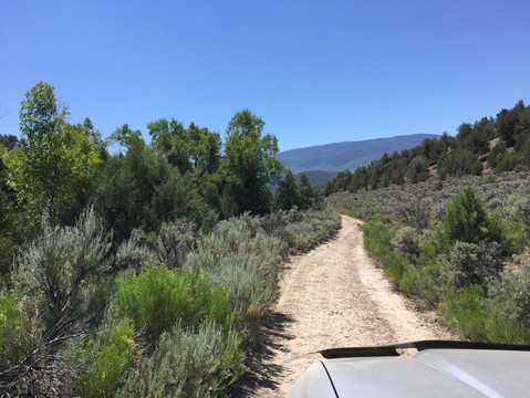 Love finding trails that aren't on the map!