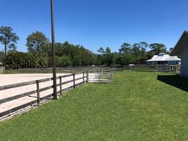 Horse Riding Center Jupiter FL