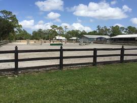 Horse Jumping Jupiter FL