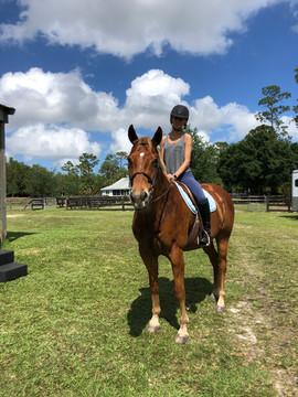 Equine Care In Jupiter FL