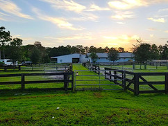 Horse Paddocks In Jupiter FL