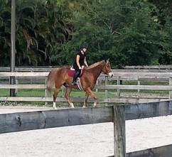 Horseback Riding Jupiter.jpeg