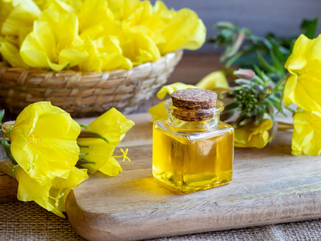 Evening Primrose Oil and Treating Multiple Sclerosis