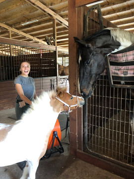 Darwin and Trixie - Riverbend Equestrian Center