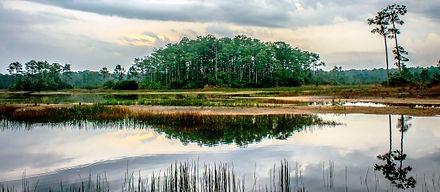 Cypress Creek Jupiter FL