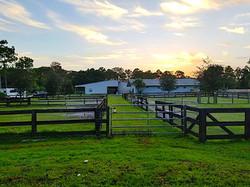 Jupiter Farms Horse Boarding
