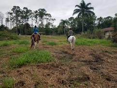 Horse Barn in Jupiter Farms