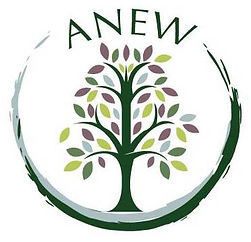 ANEW - Live Well UT - University of Tampa - Tampa, FL