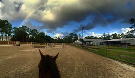 Riding Ring In Jupiter Farms FL