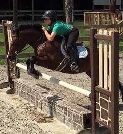 English Riding In Jupiter Farms FL