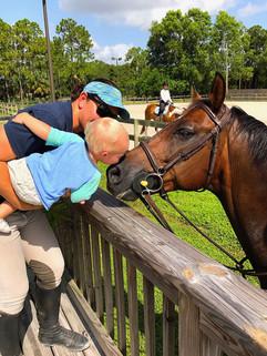 Horse Boarding Jupiter FL