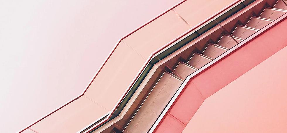 Stairway rose.webp