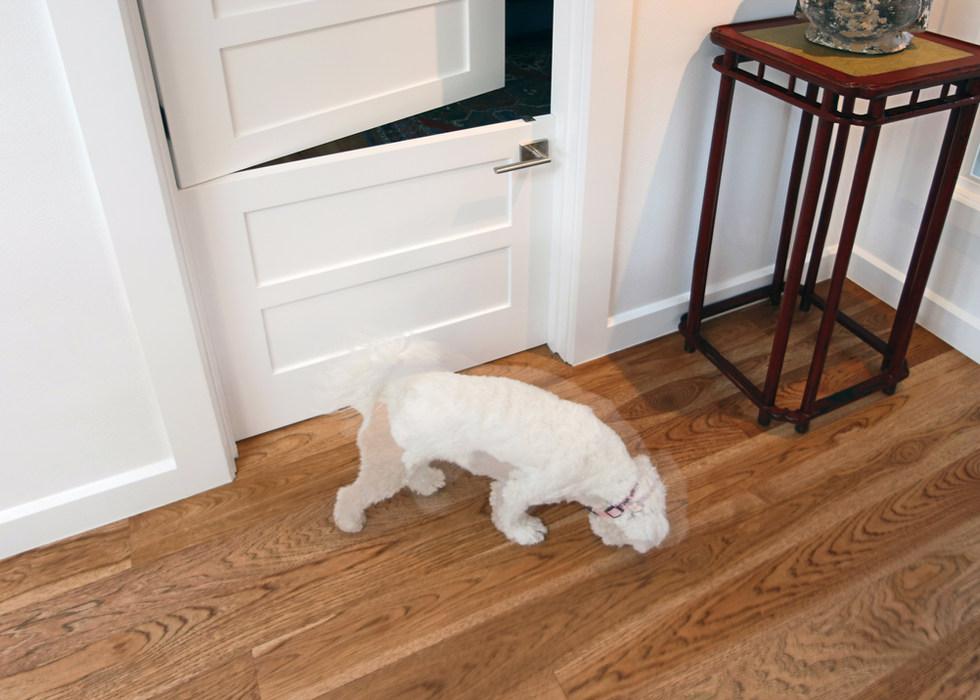 DUTCH DOORS FOR PETS