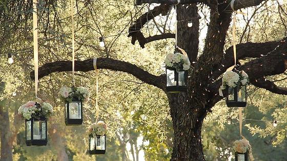 hanging-lanterns.jpg