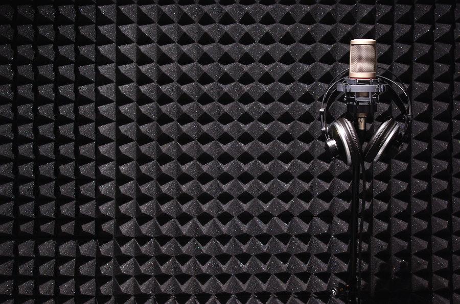 acoustic ricofon ρικοφον.jpg