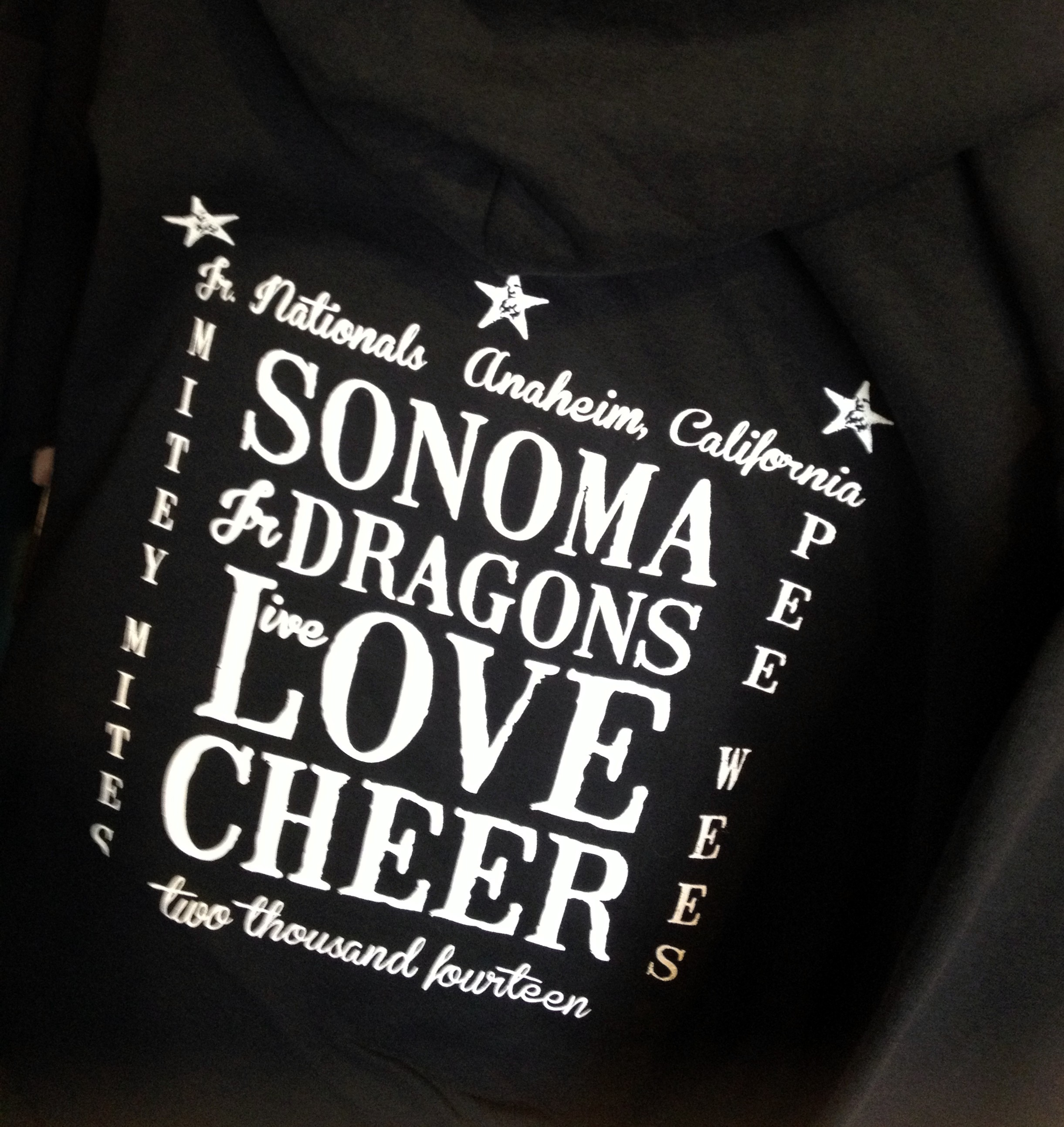 Sonoma Jr. Dragons Cheer